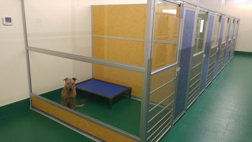 Boarding - 5x8 kennel w dog